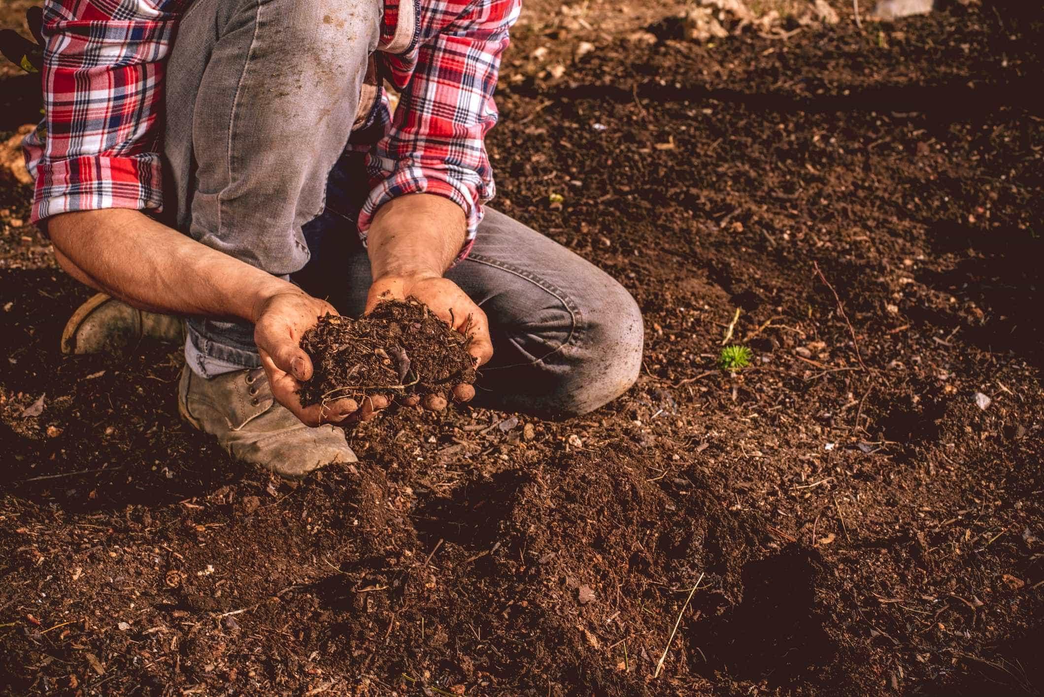 Bruxelas aumenta ajudas a agricultores sem notificação prévia
