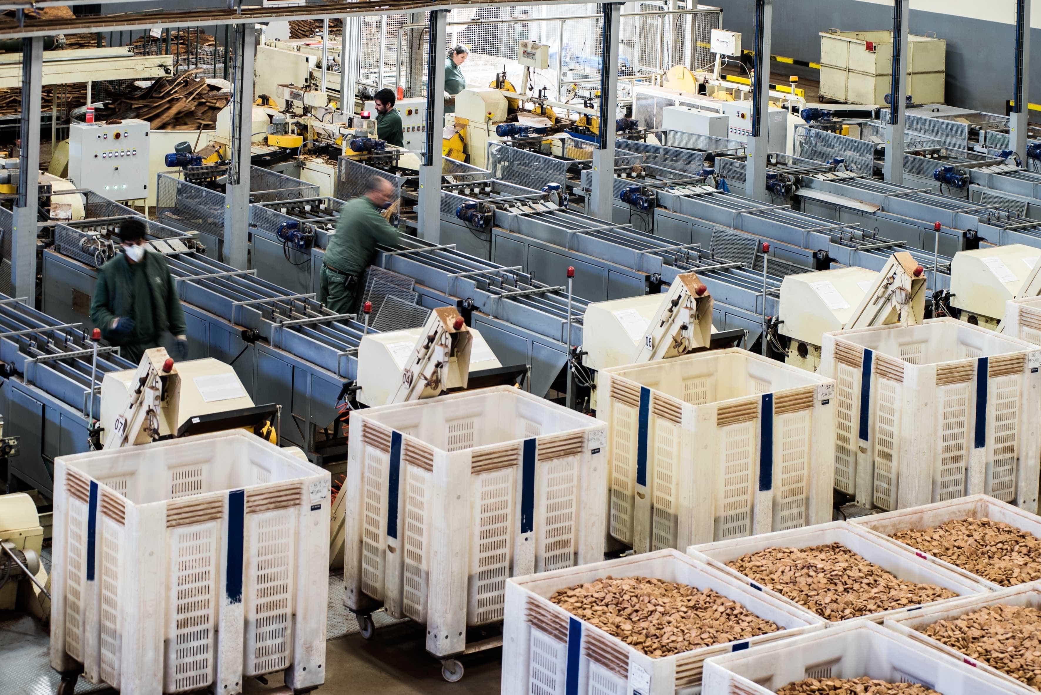 Lucro da Corticeira Amorim subiu 9% para 41 milhões de euros