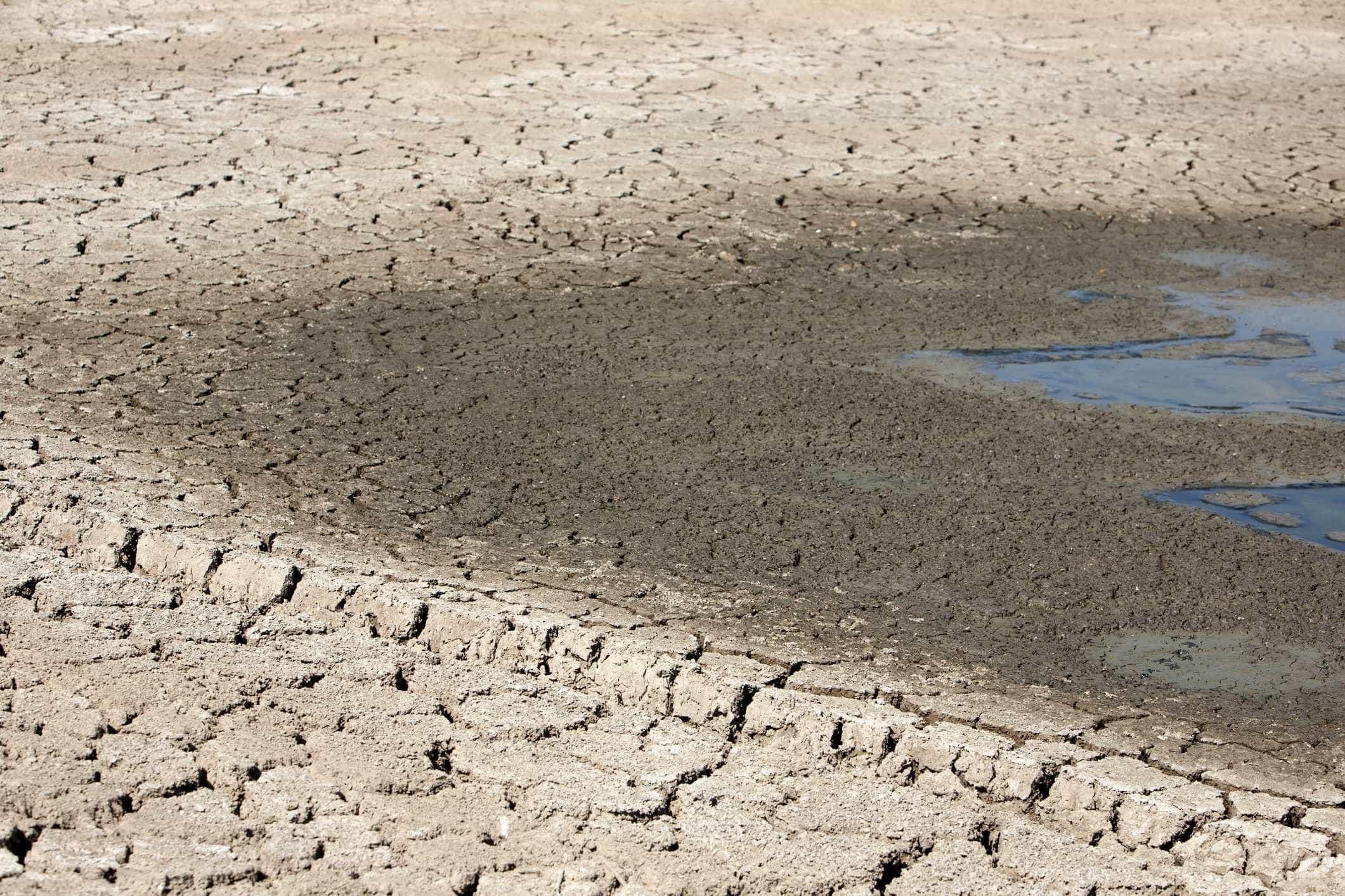 Em agosto deste ano, Portugal continuava sem seca meteorológica