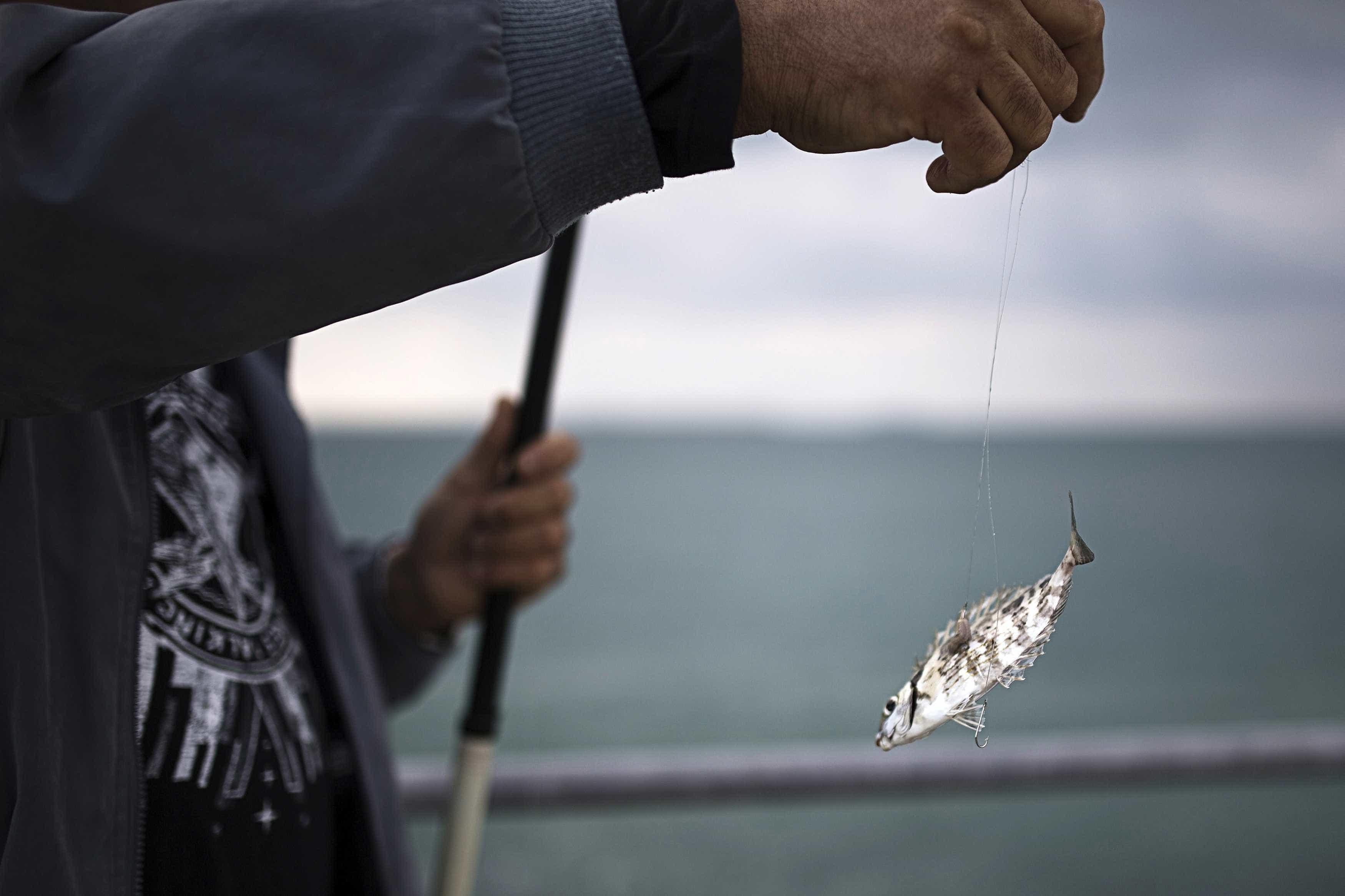 Açores garante celeridade no fundo de compensação salarial dos pescadoes