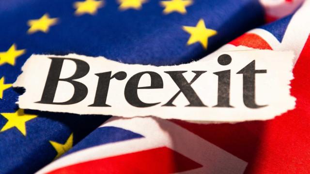 'Brexit': Produtores de frutos vermelhos procuram mercados alternativos