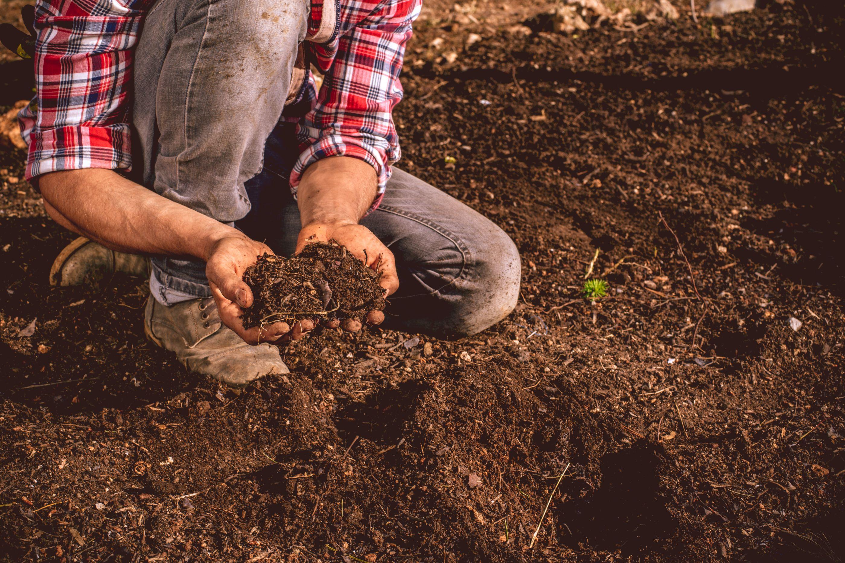 SABIA QUE hoje é dia do agricultor?