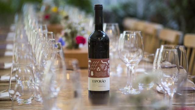 Esporão investe 3,5 milhões e renova adega dedicada aos vinhos tintos