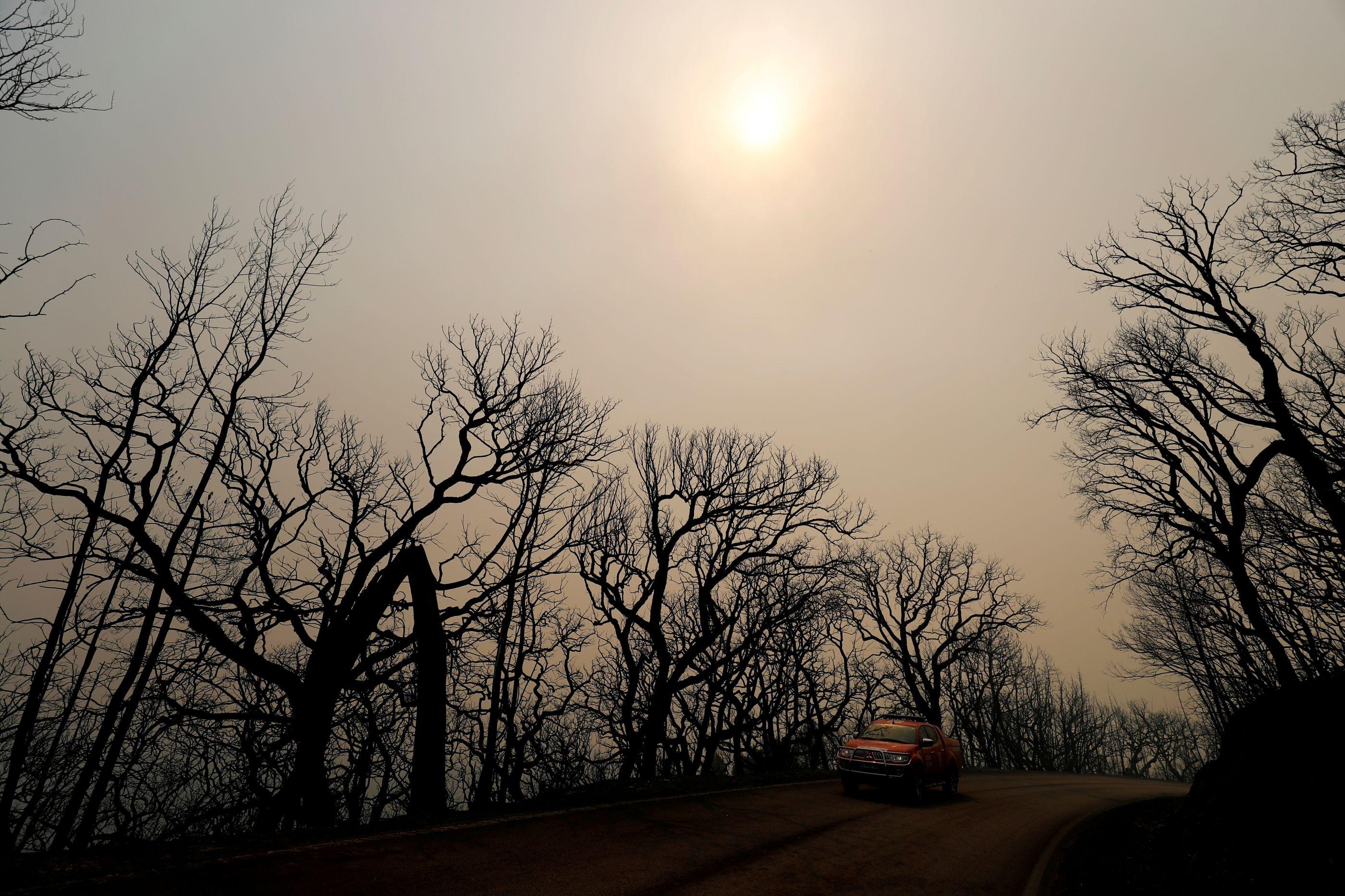 Quase trinta concelhos de cinco distritos em risco máximo de incêndio