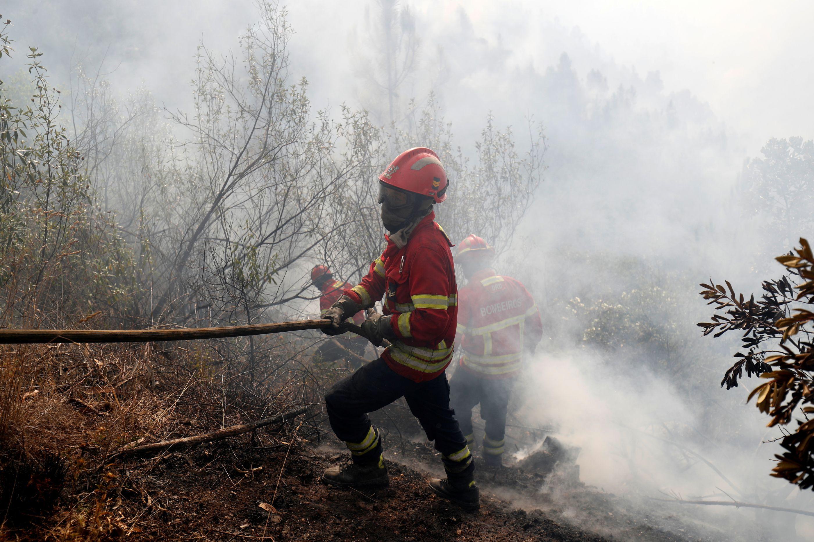 Risco muito elevado de incêndio em oito concelhos de Faro e Portalegre