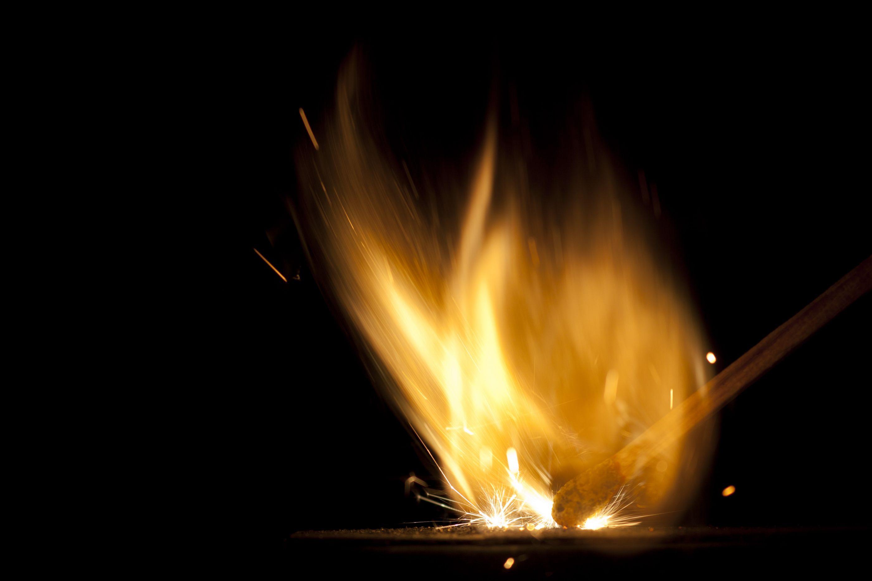 Sete feridos em fogo nas instalações da coudelaria de Alter do Chão