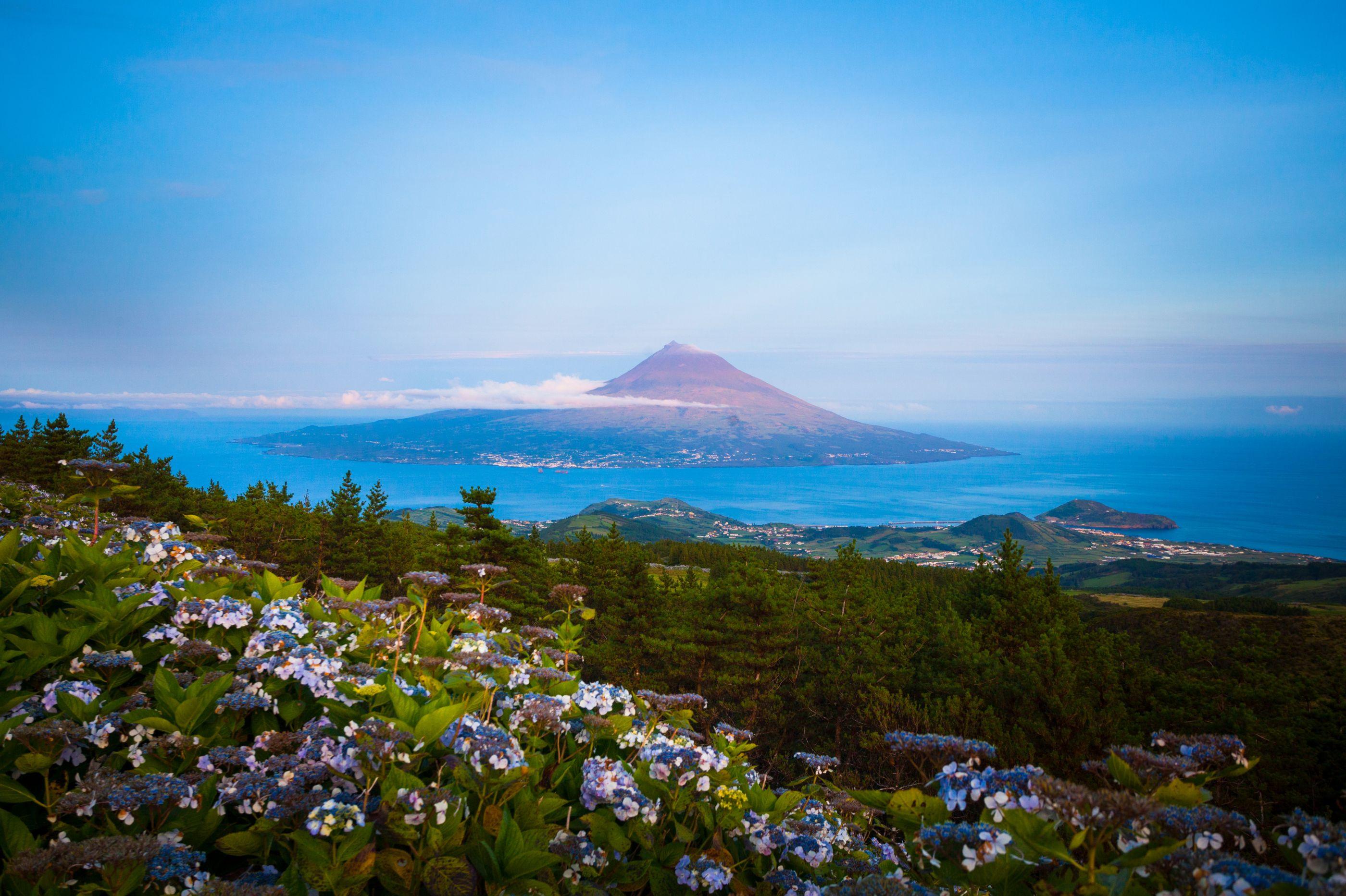 PCP/Açores critica atraso na majoração de apoios sociais na ilha do Pico