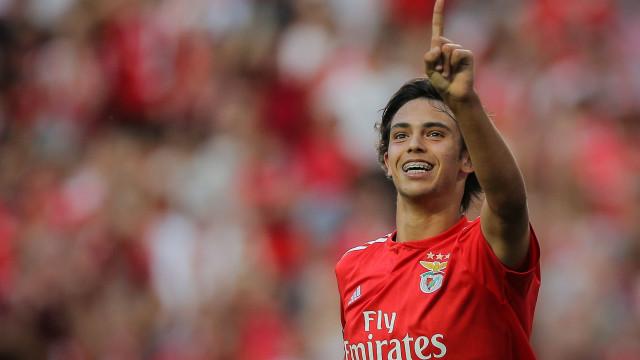 """Benfica e o 'pisão' a Félix: """"Não se pode tornar numa caça ao homem"""""""