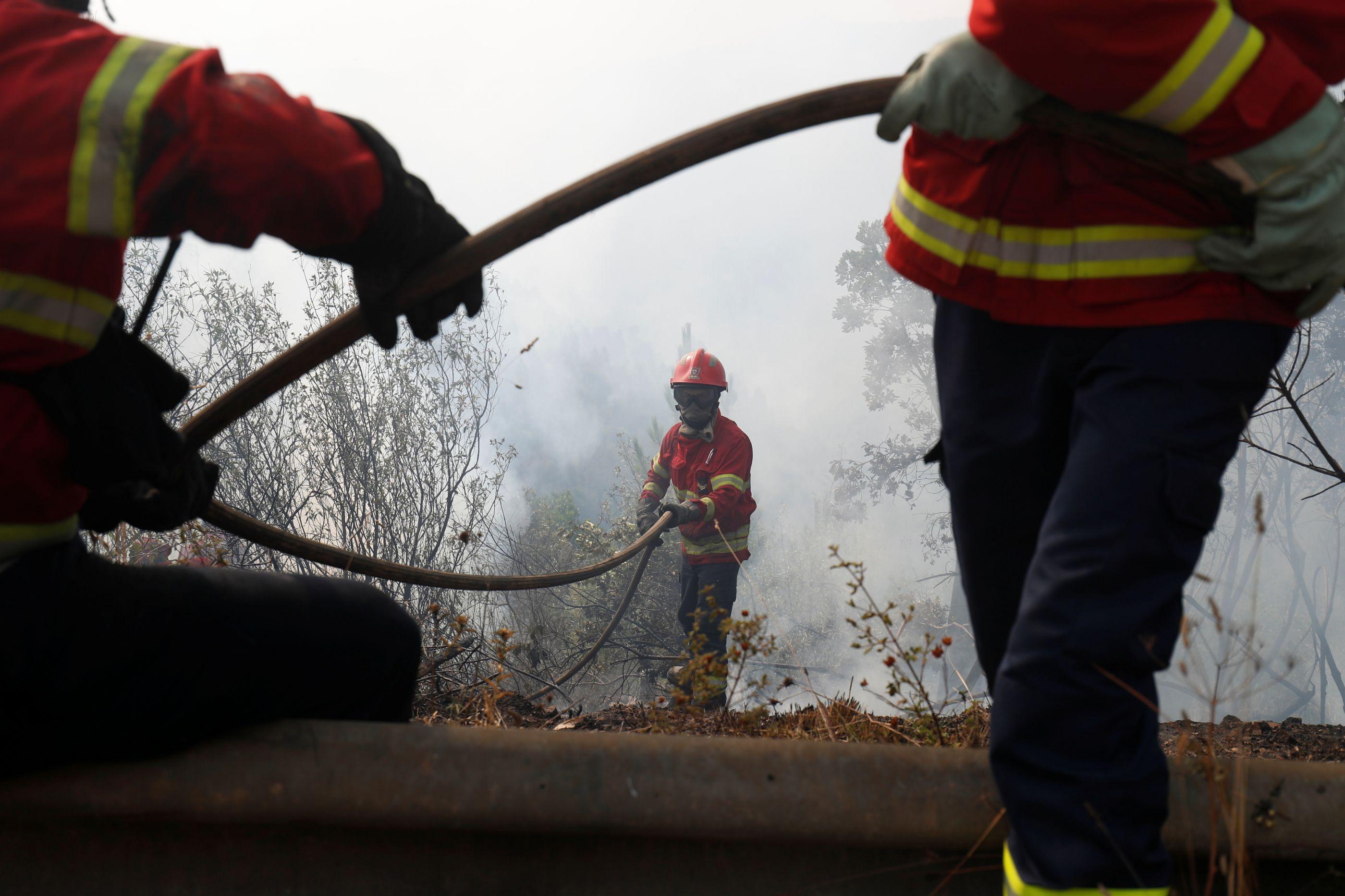 Fogo na serra de Sintra entrou na fase de rescaldo. Há 21 feridos