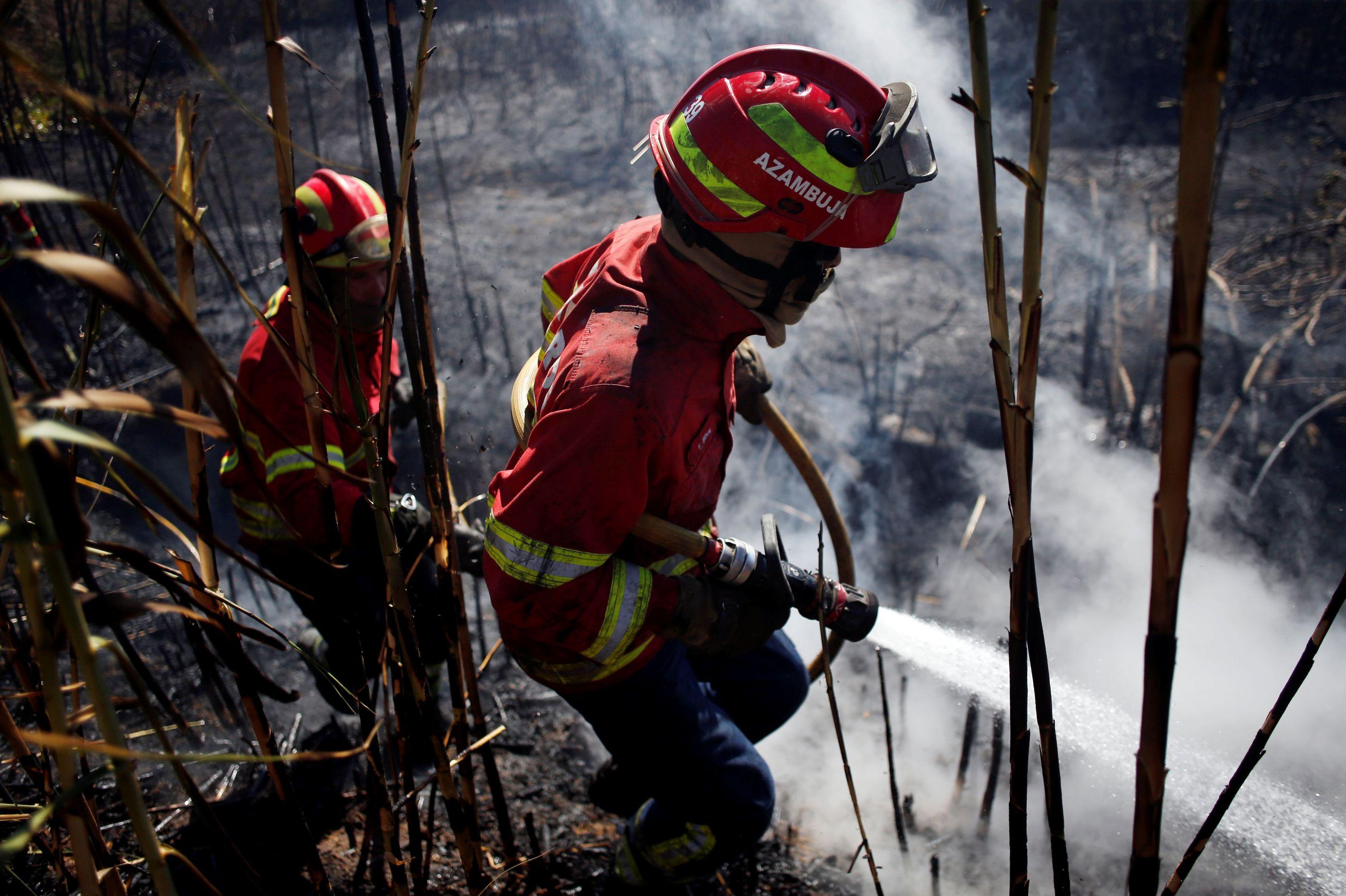 Recomendações de peritos europeus sobre serra de Sintra foram aplicadas