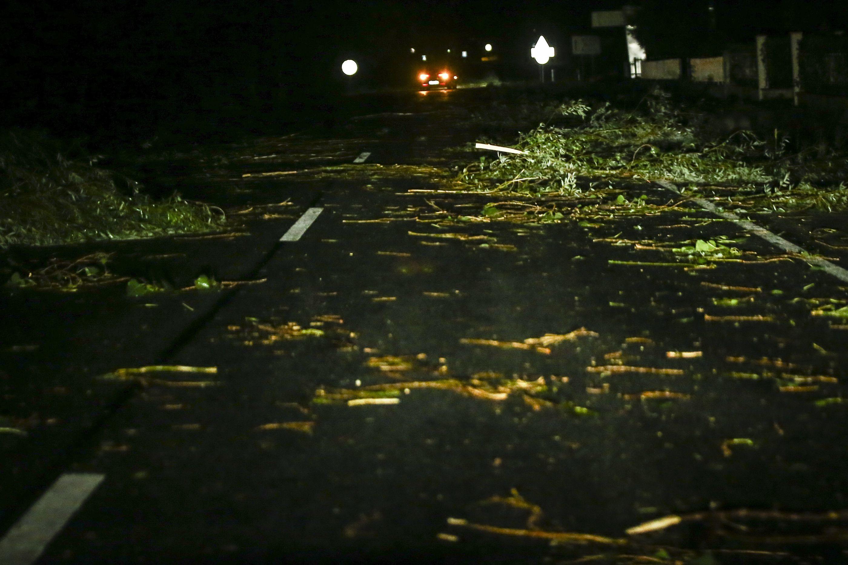 Queda de árvores, apagões e desalojados. O rasto da passagem de Leslie