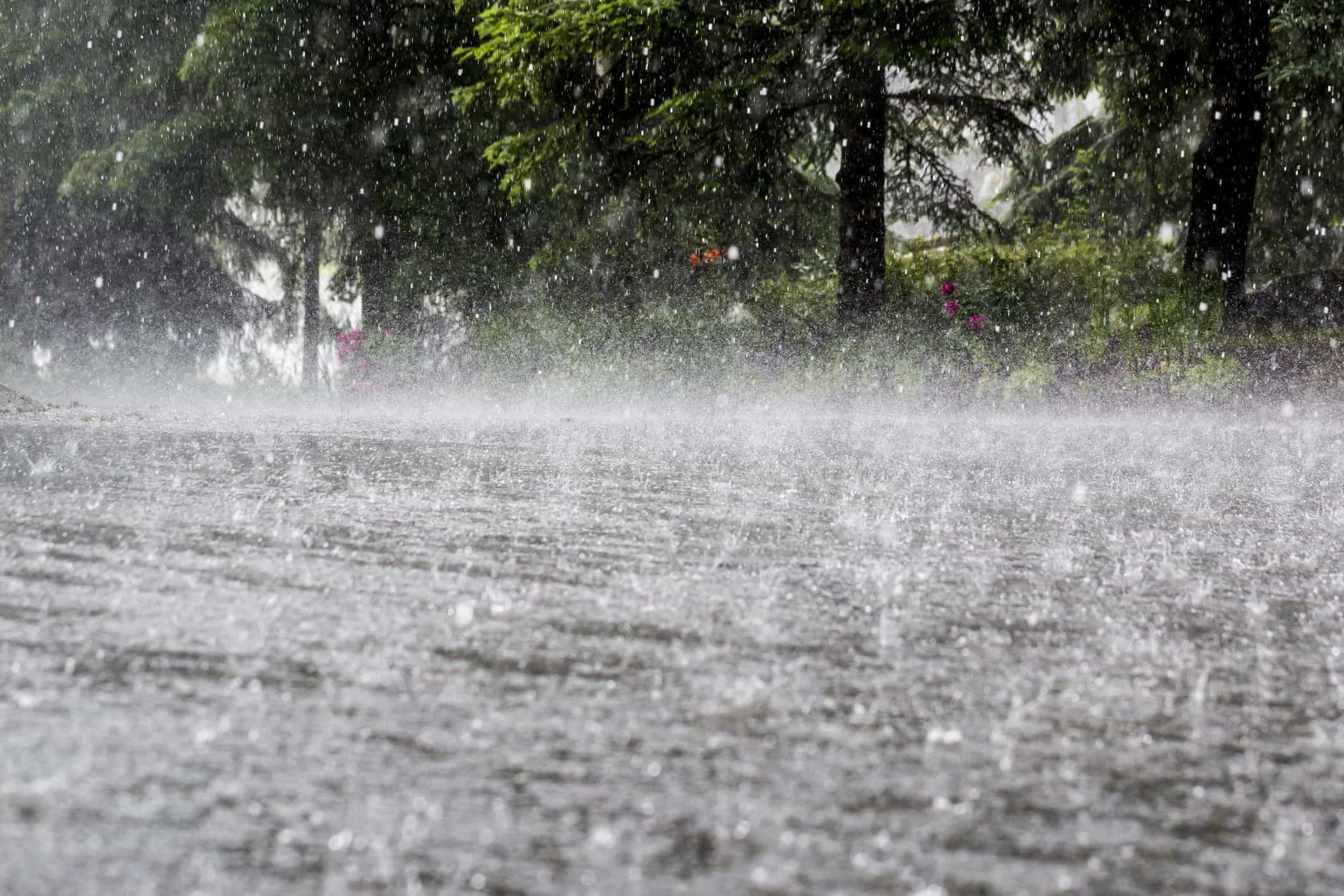 Vento e chuva colocam dez distritos do continente sob aviso amarelo