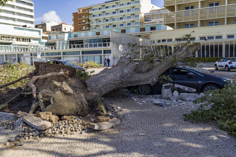 PCP questiona Bruxelas sobre prejuízos da tempestade Leslie