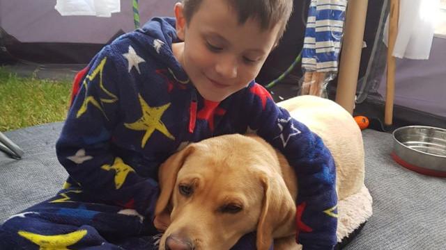 Cão muda vida de menino autista que tinha medo de sair de casa