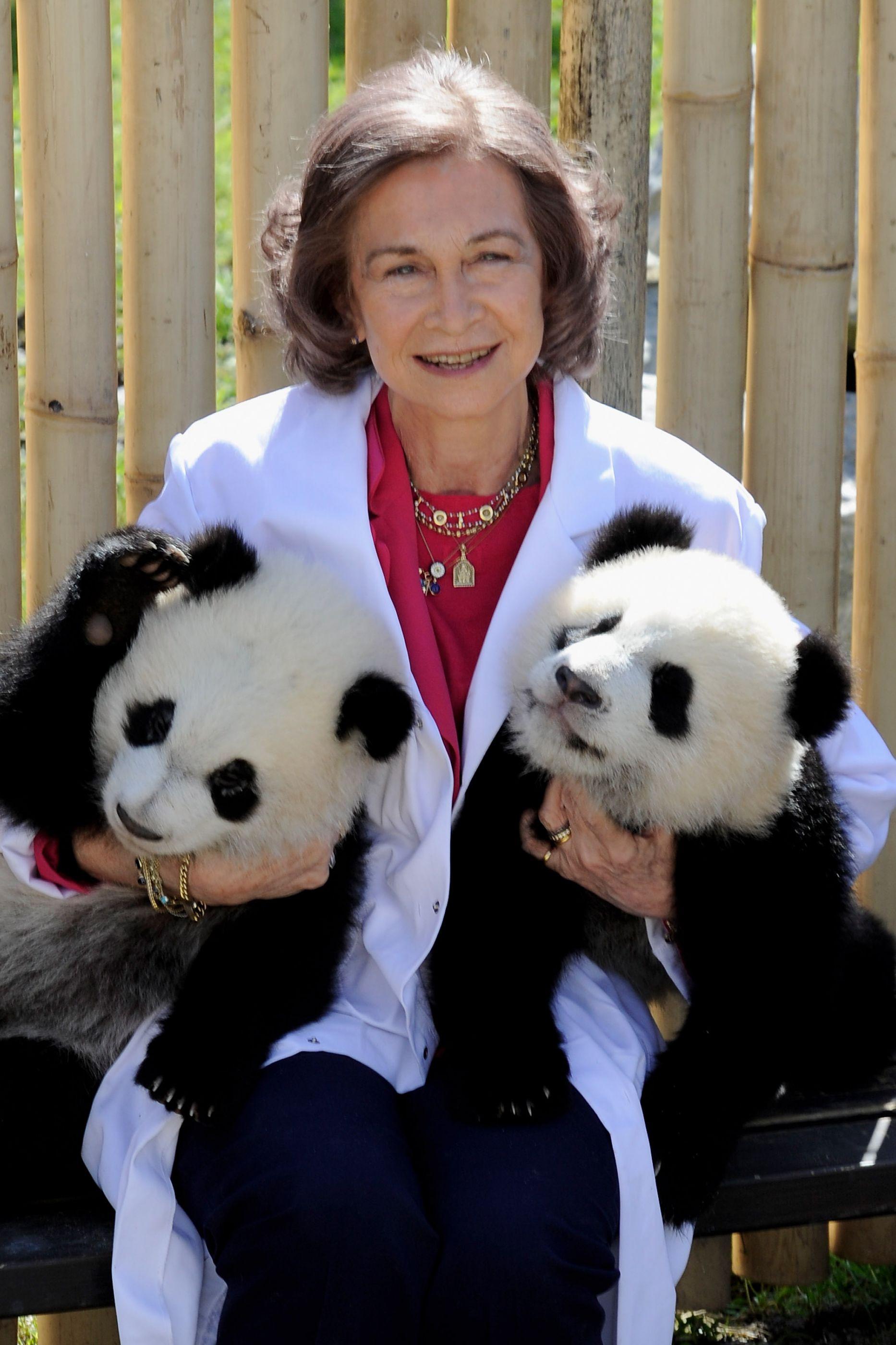 Sofia está de parabéns! Eterna rainha de Espanha faz 80 anos