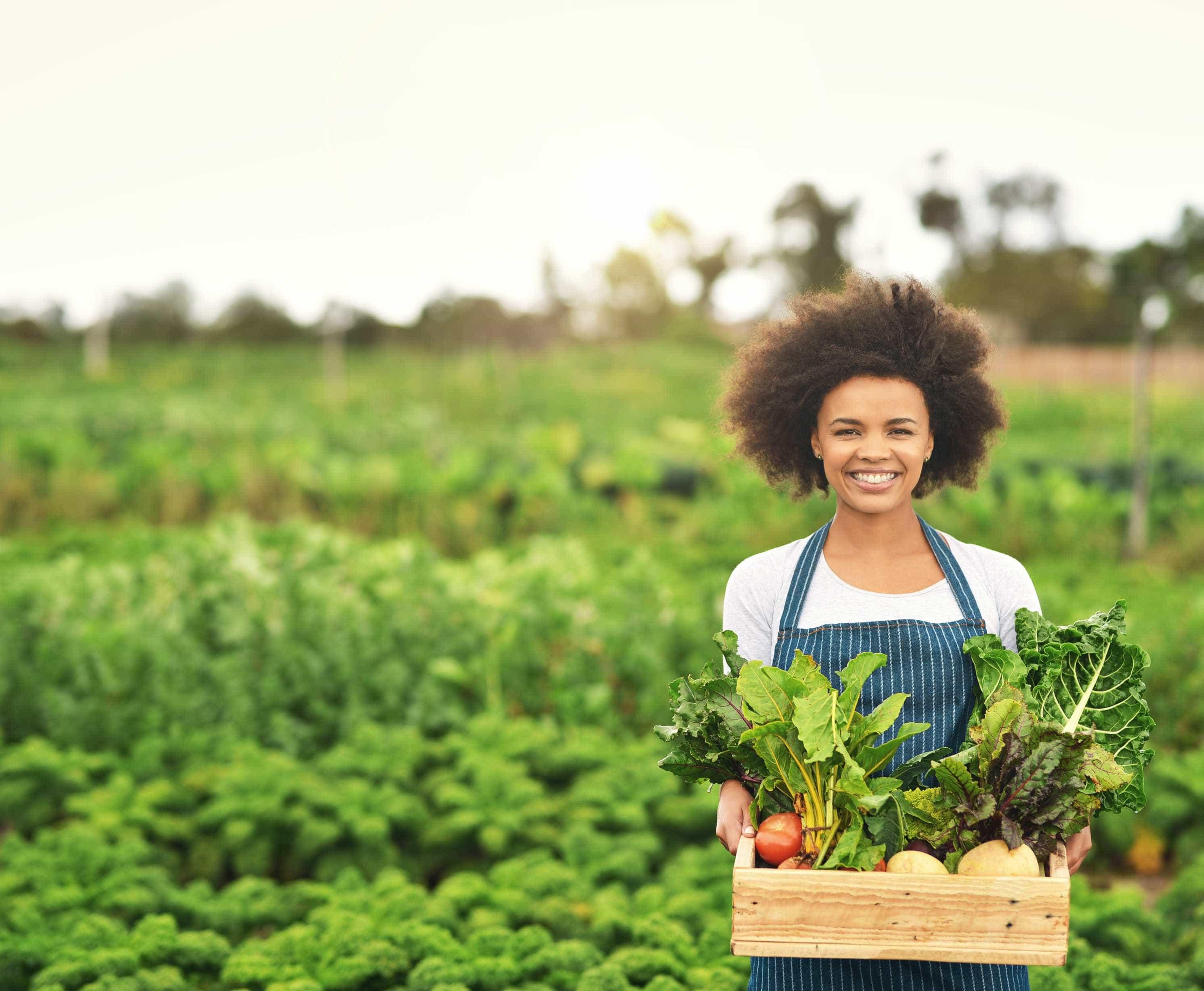 Consumir alimentos orgânicos ajuda a reduzir o risco de cancro