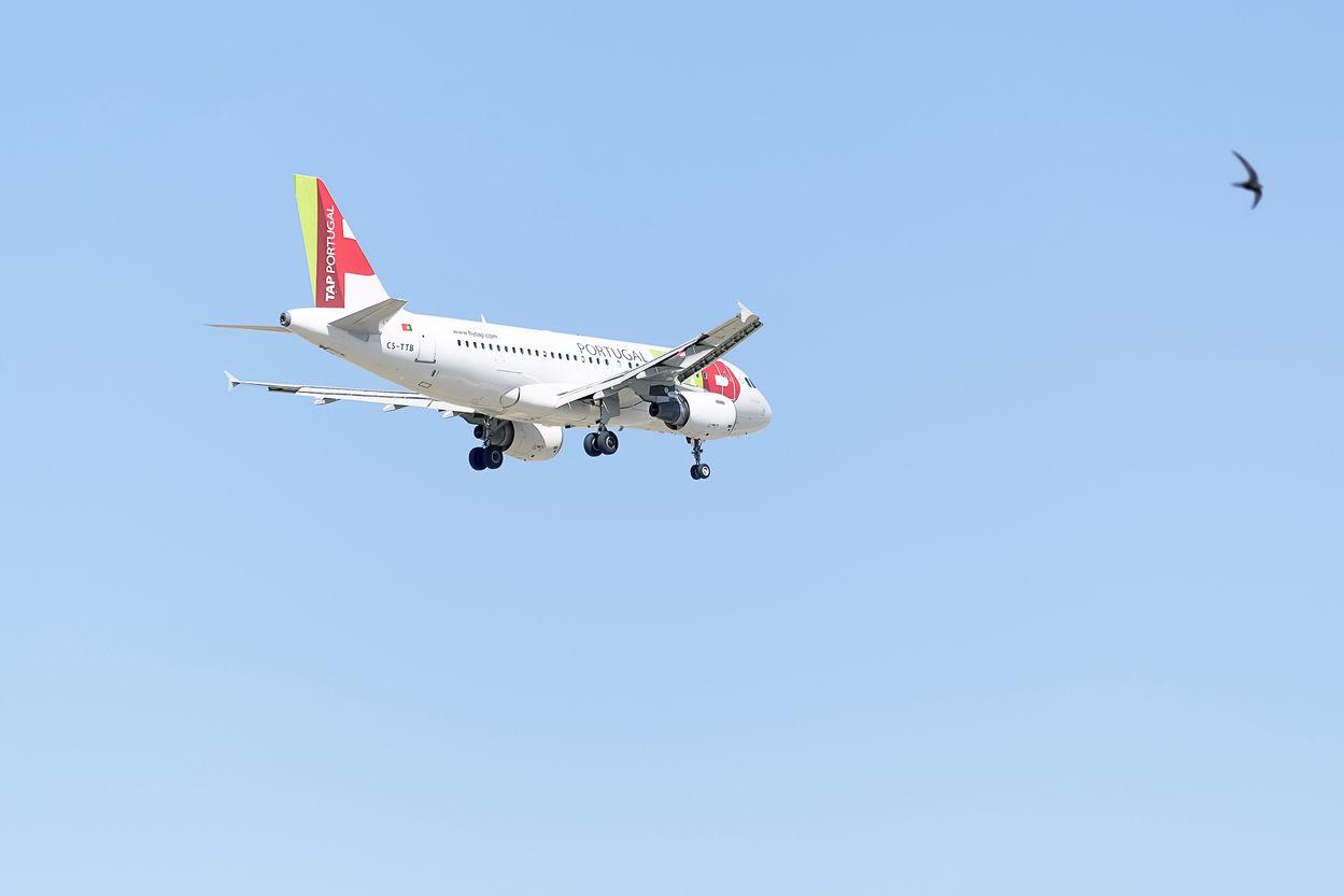 Mau tempo. TAP diverge voo de Lisboa para Faro e admite mais alterações