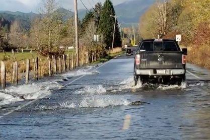 Salmão atravessa estrada parcialmente inundada nos EUA