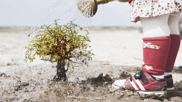 Conheça a geração que mais recicla e compra produtos biológicos