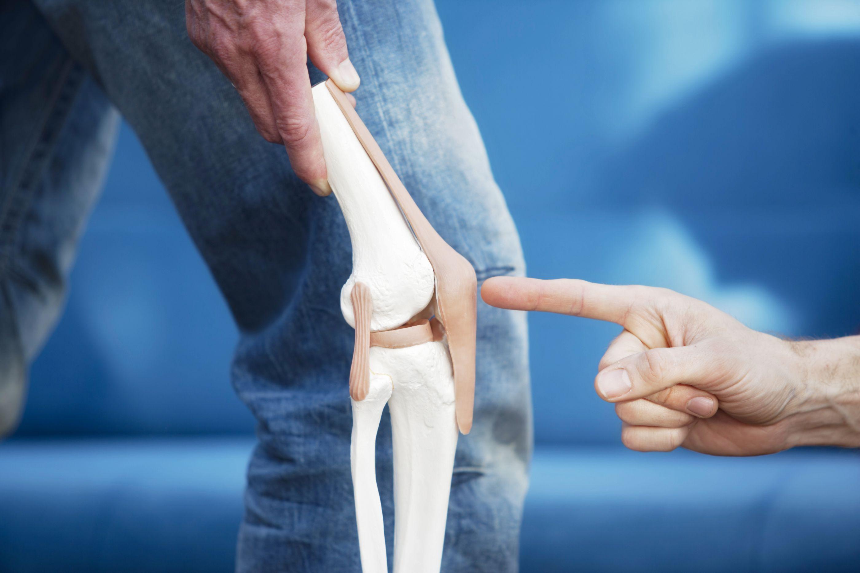Cartilagem sintética já pode ser usada em qualquer parte do corpo