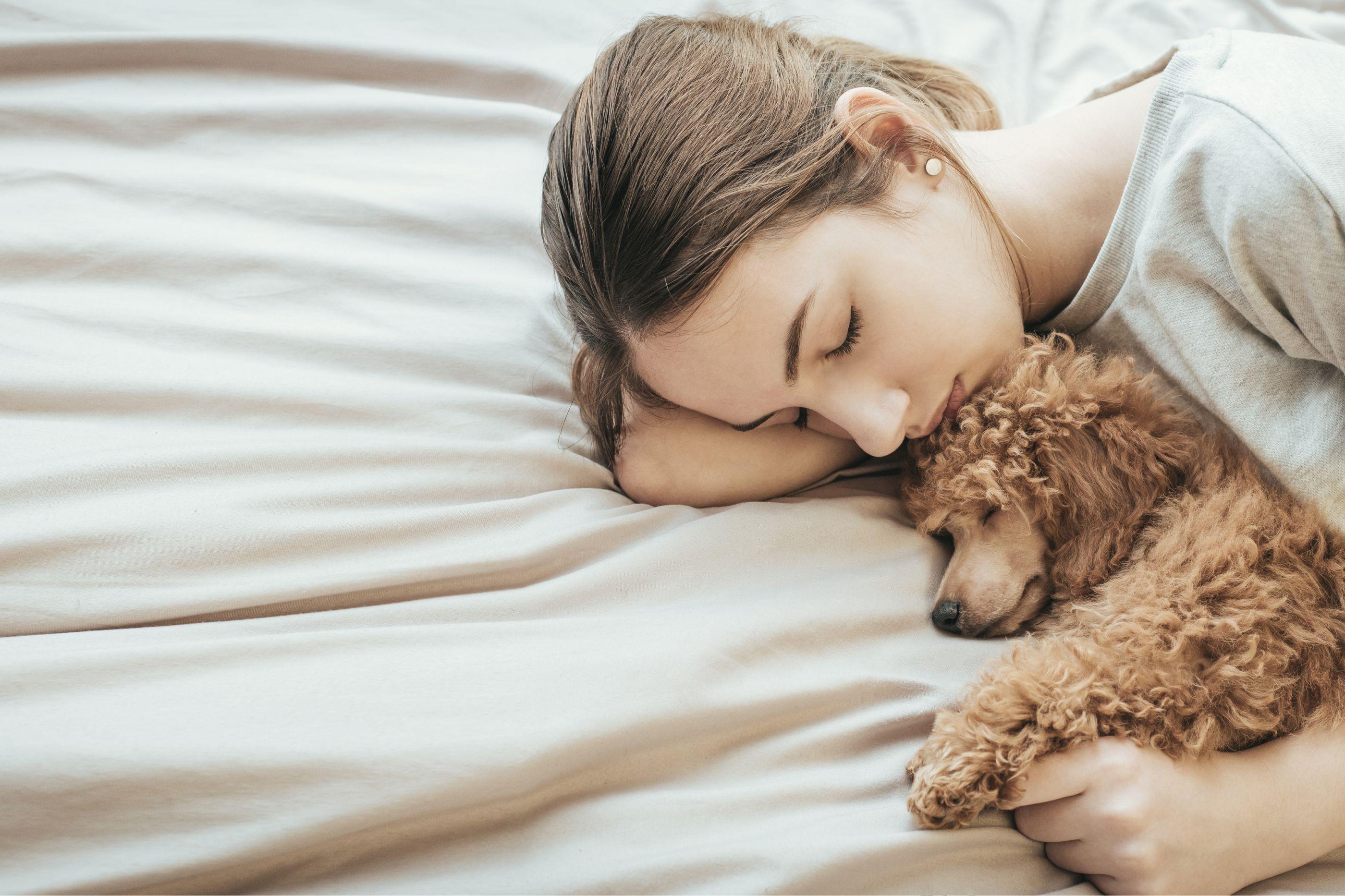 Dorme-se melhor com cães do que com pessoas, principalmente nestes casos
