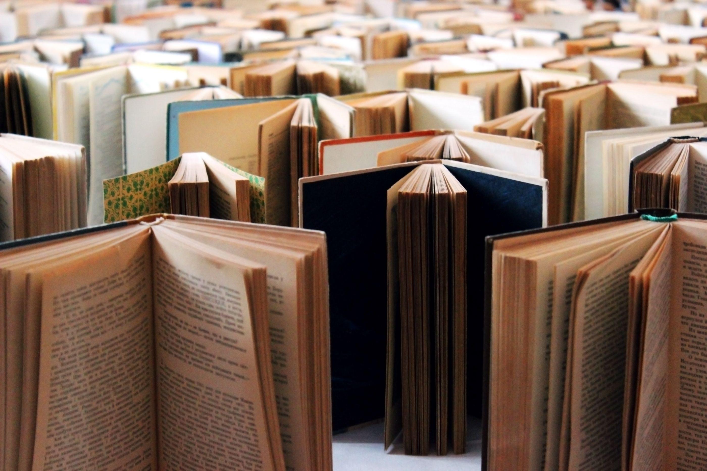 Instituto Camões lança prémio para distinguir literatura angolana
