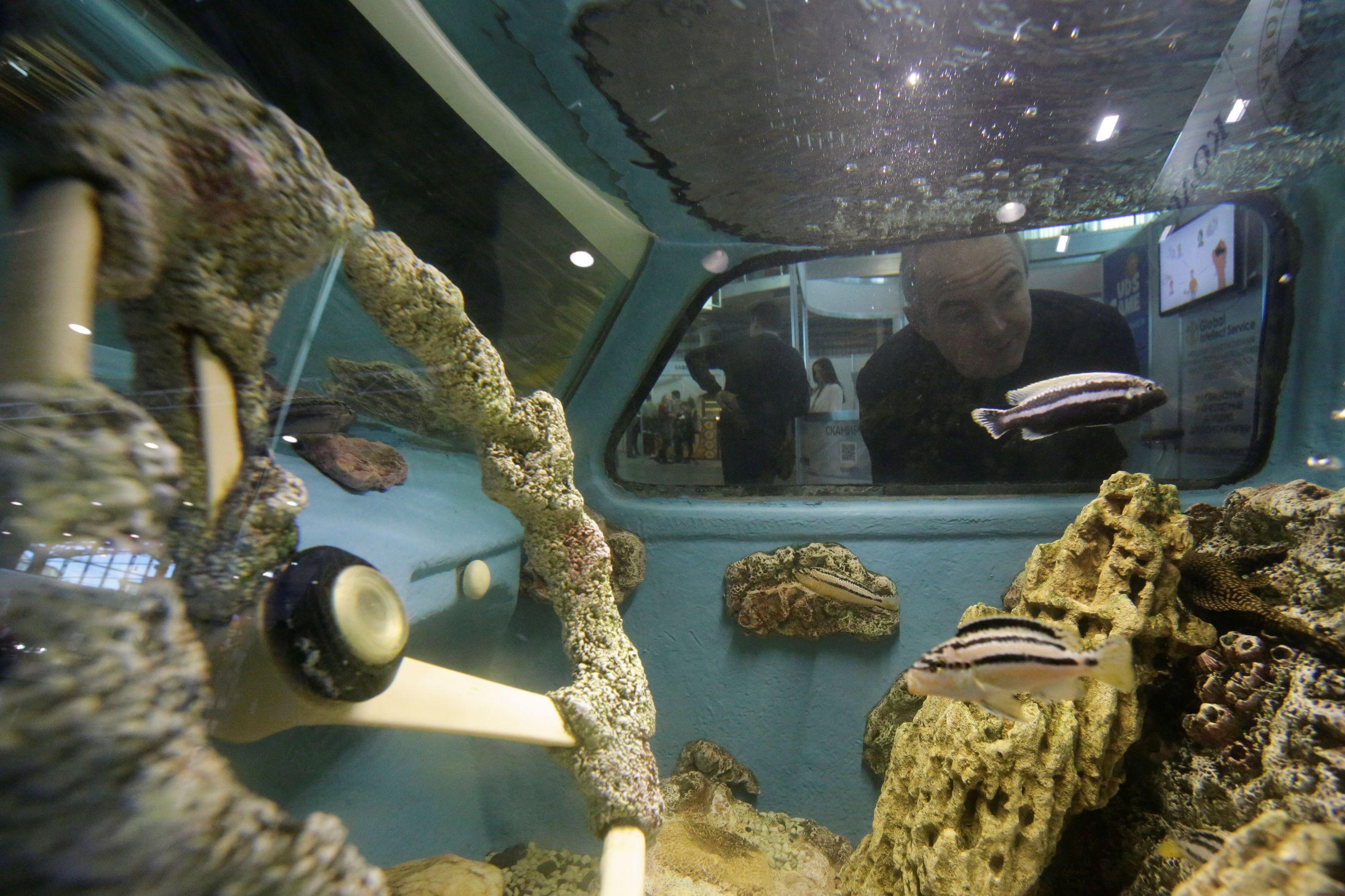 Carro clássico da União Soviética foi transformado em aquário