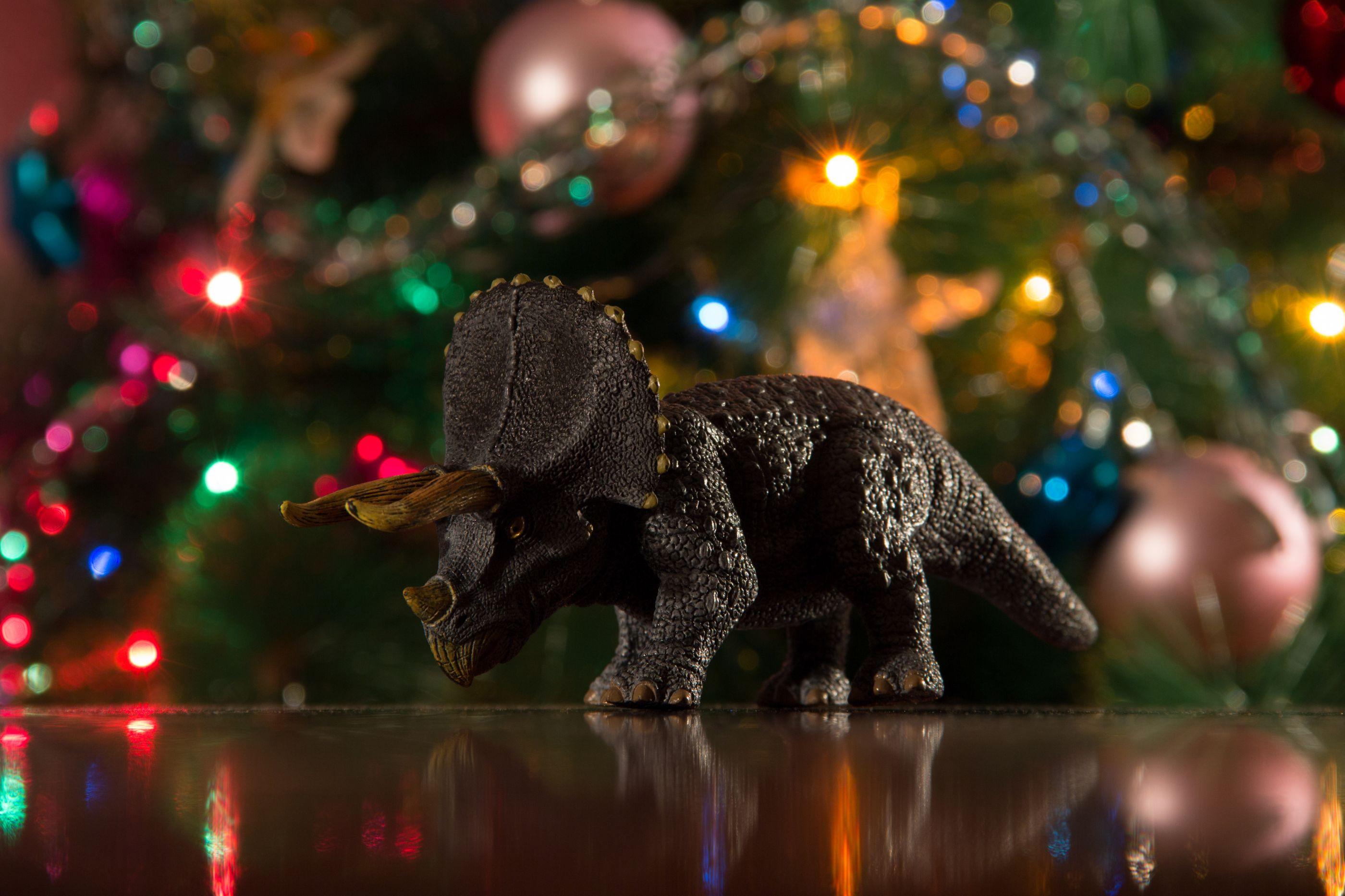 Dino Parque apresenta a árvore de Natal mais pré-histórica do mundo