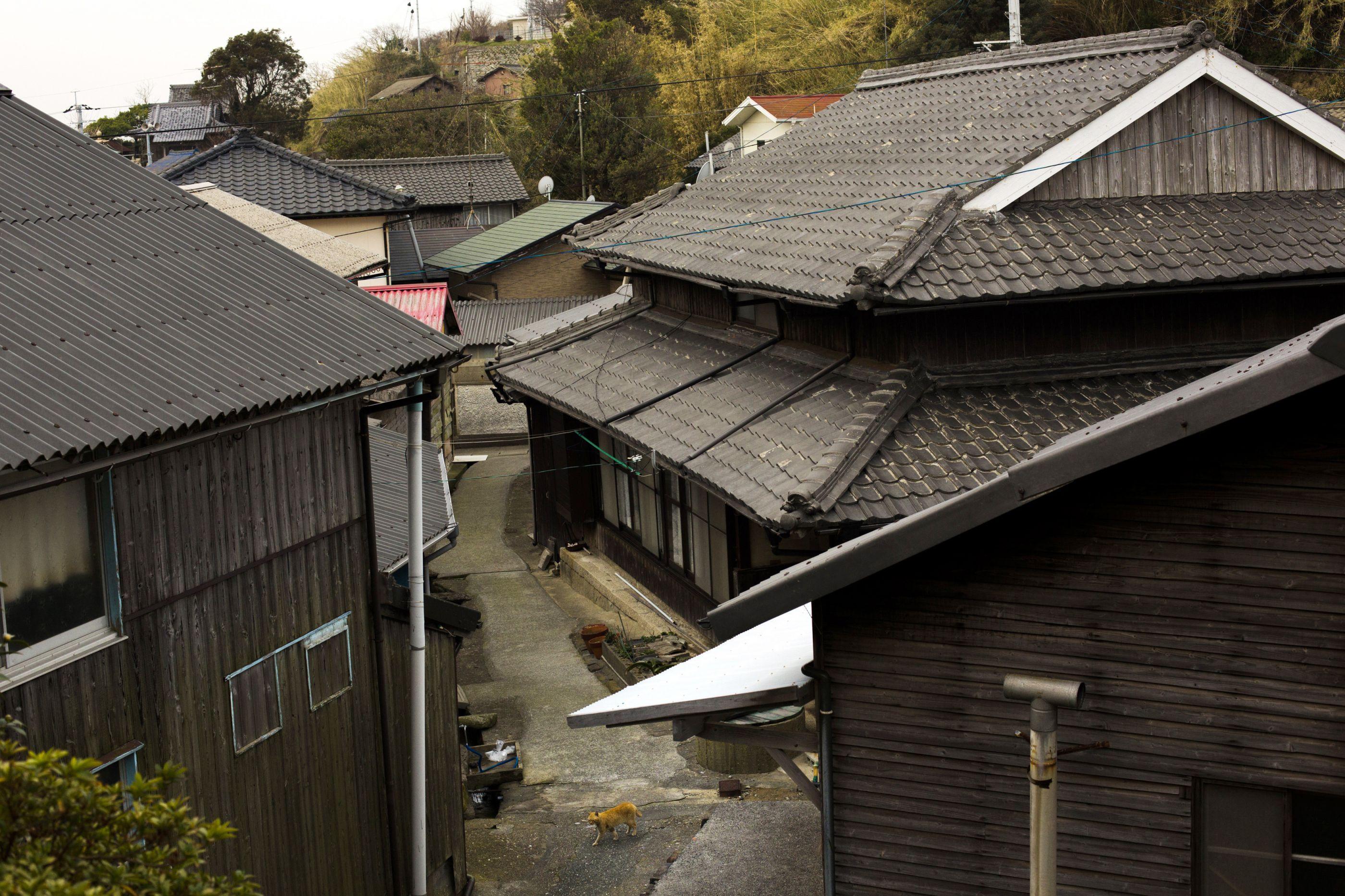 Casas abandonadas no Japão estão a ser distribuídas de graça