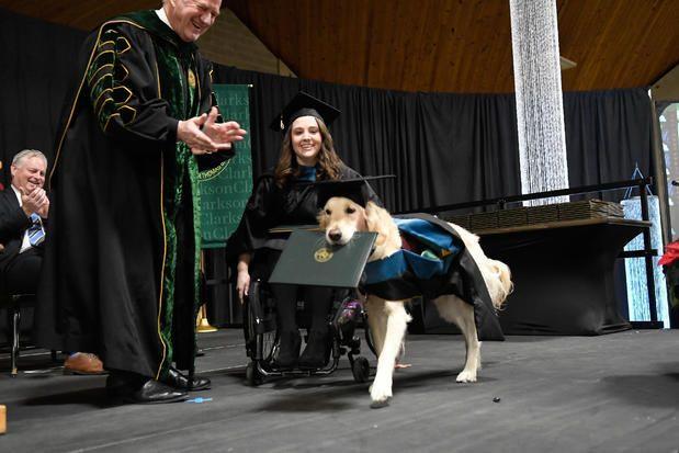 Cão recebe diploma honorário nos EUA por ajudar aluna em cadeira de rodas