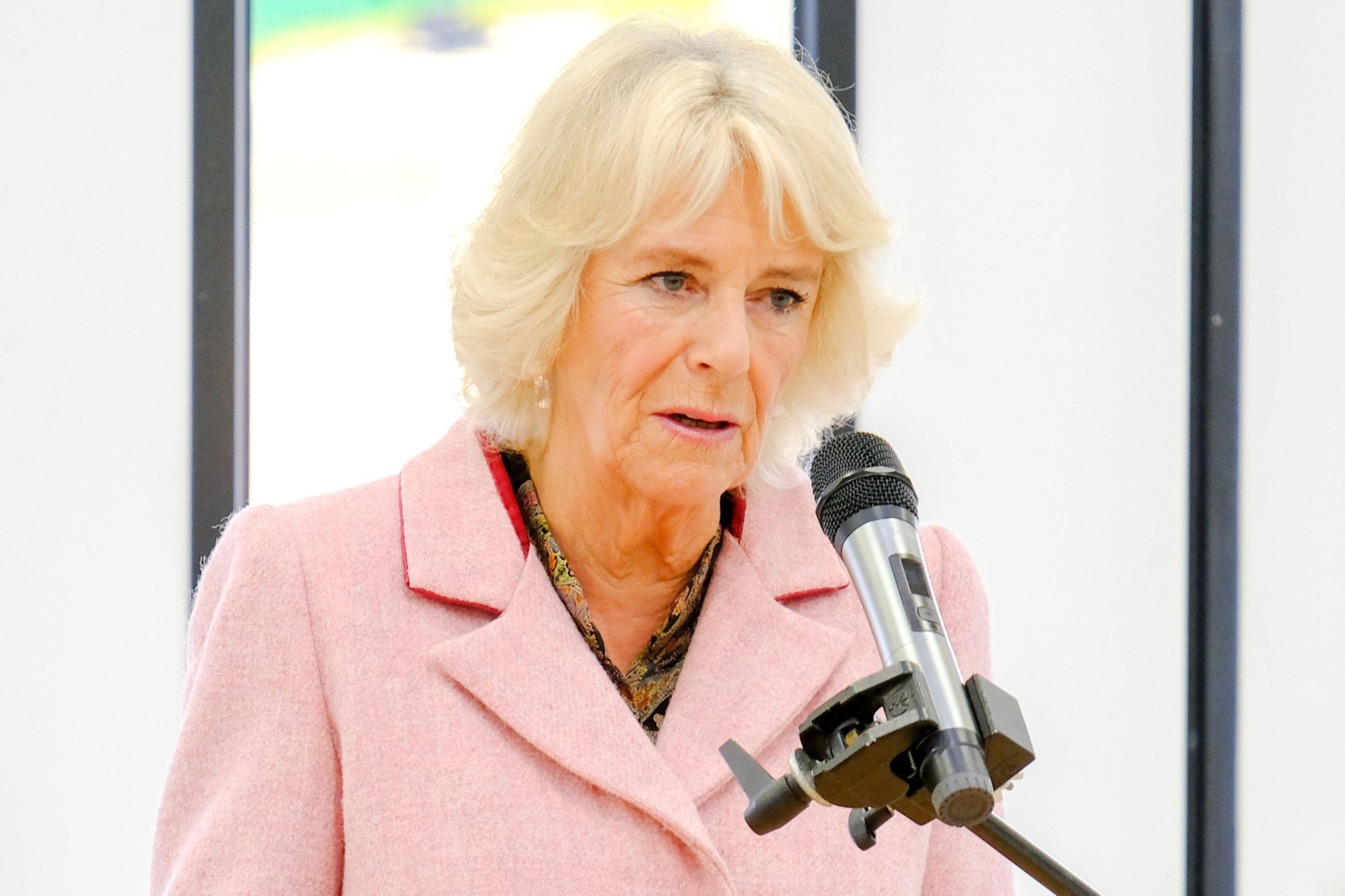 Porque é que Camilla Parker Bowles não foi ao almoço de Natal da realeza?