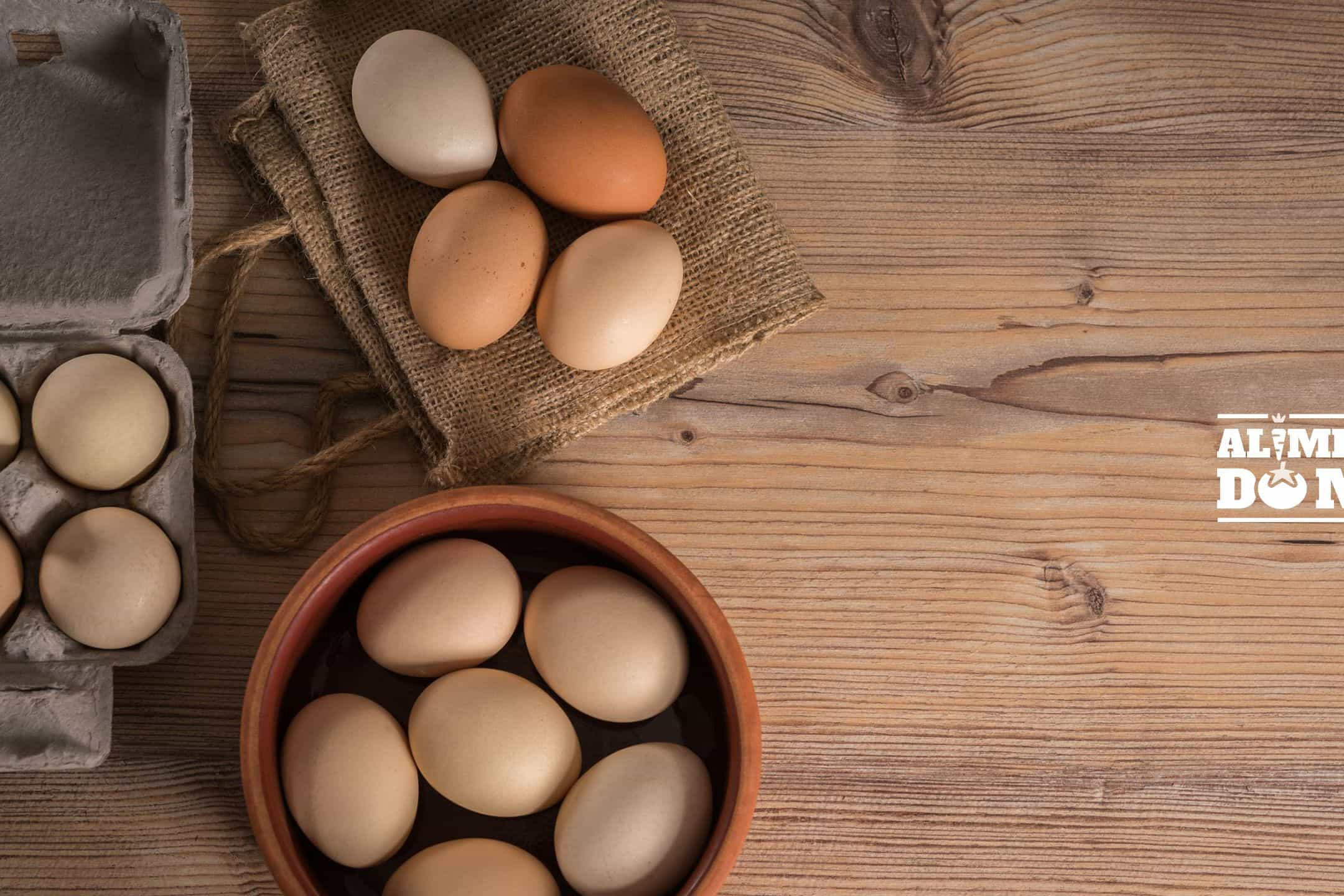 """Será o ovo um """"herói dos desportistas"""" ou o """"vilão do colesterol""""?"""