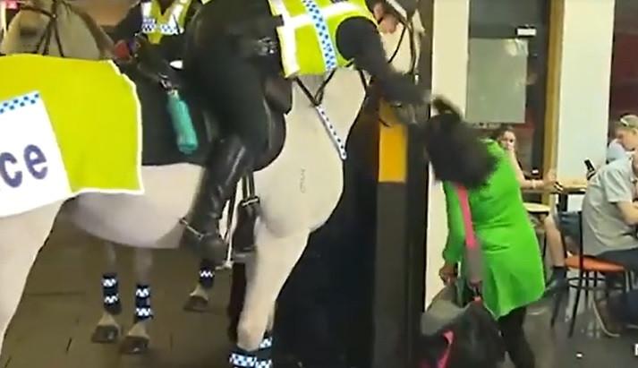 Esmurra cavalo da polícia e agente 'responde' com puxão de cabelos
