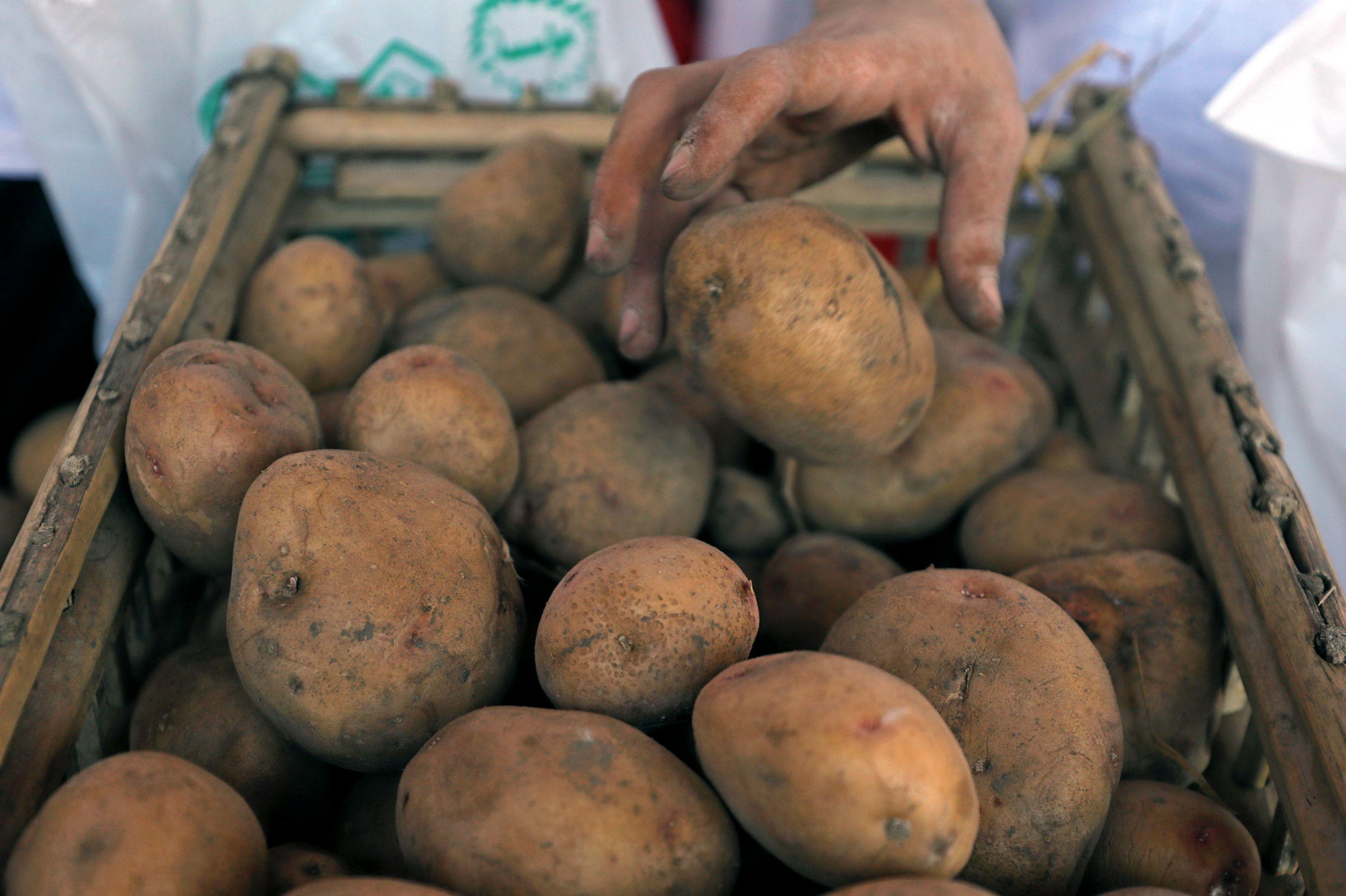 Granada da I Guerra encontrada em Hong Kong no meio de... batatas