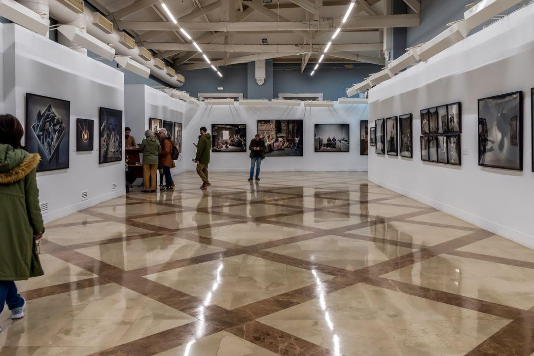 Curador alemão Tobi Maier vai dirigir Galerias Municipais de Lisboa