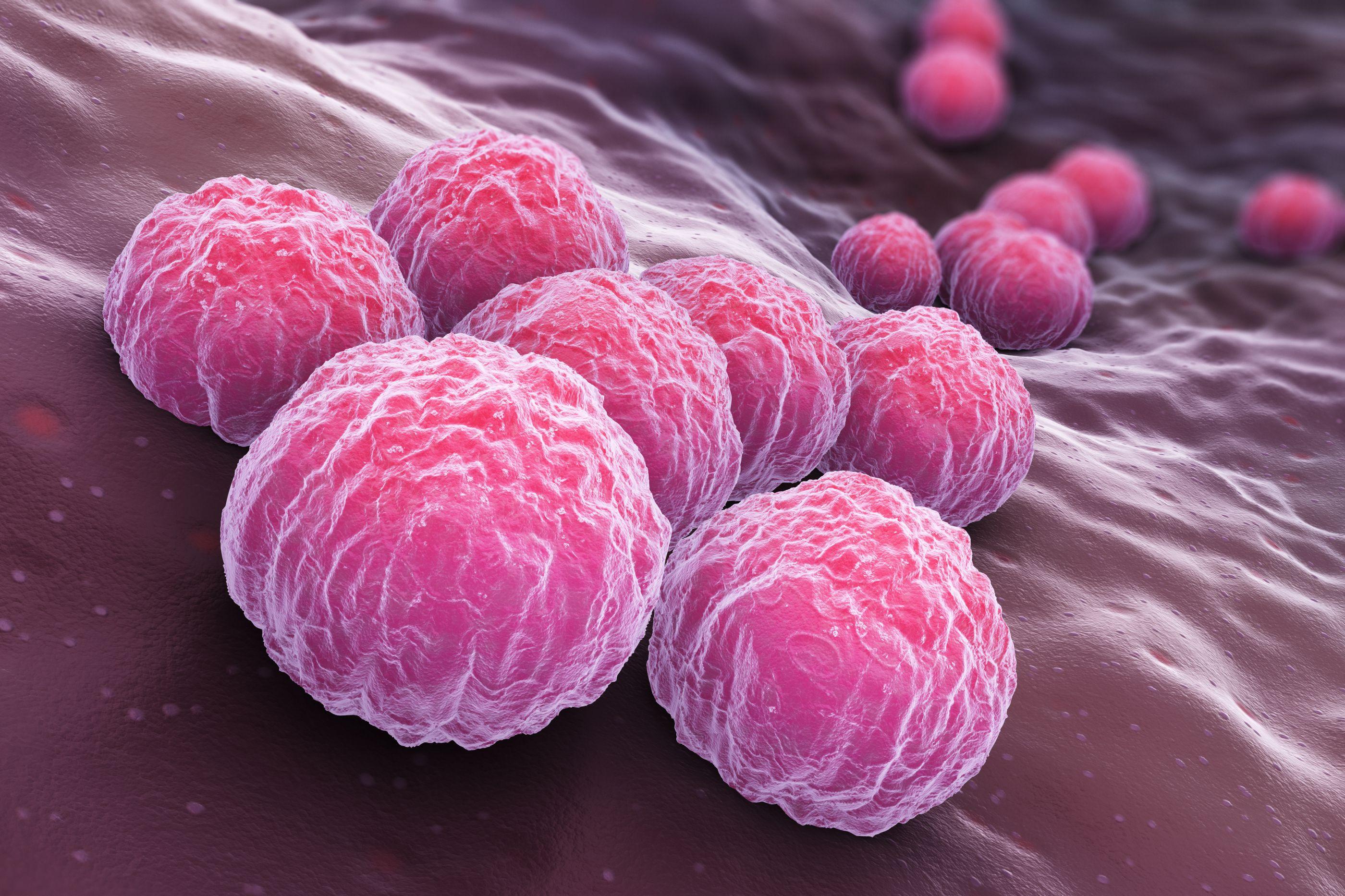 Cientistas desenvolvem novo tratamento para clamídia sem antibióticos