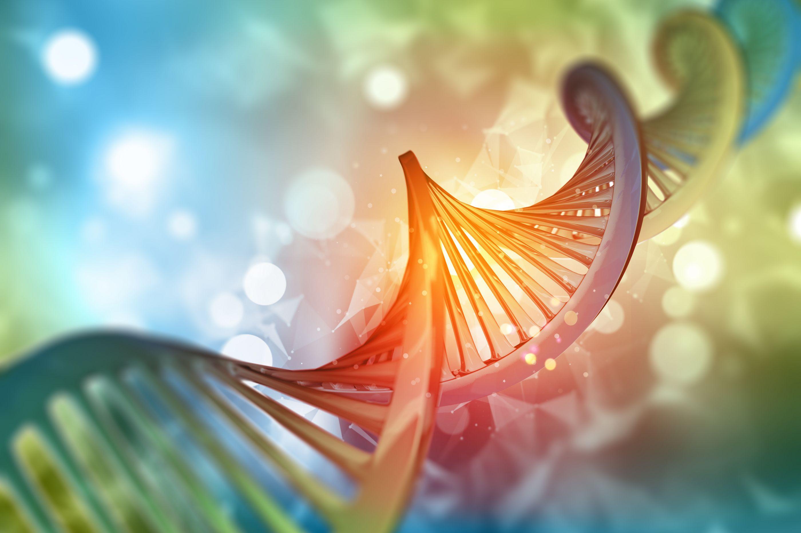 Medicina Interna incentiva investigação sobre doenças autoimunes