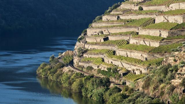 Quinta de La Rosa convida a celebrar o amor no Douro