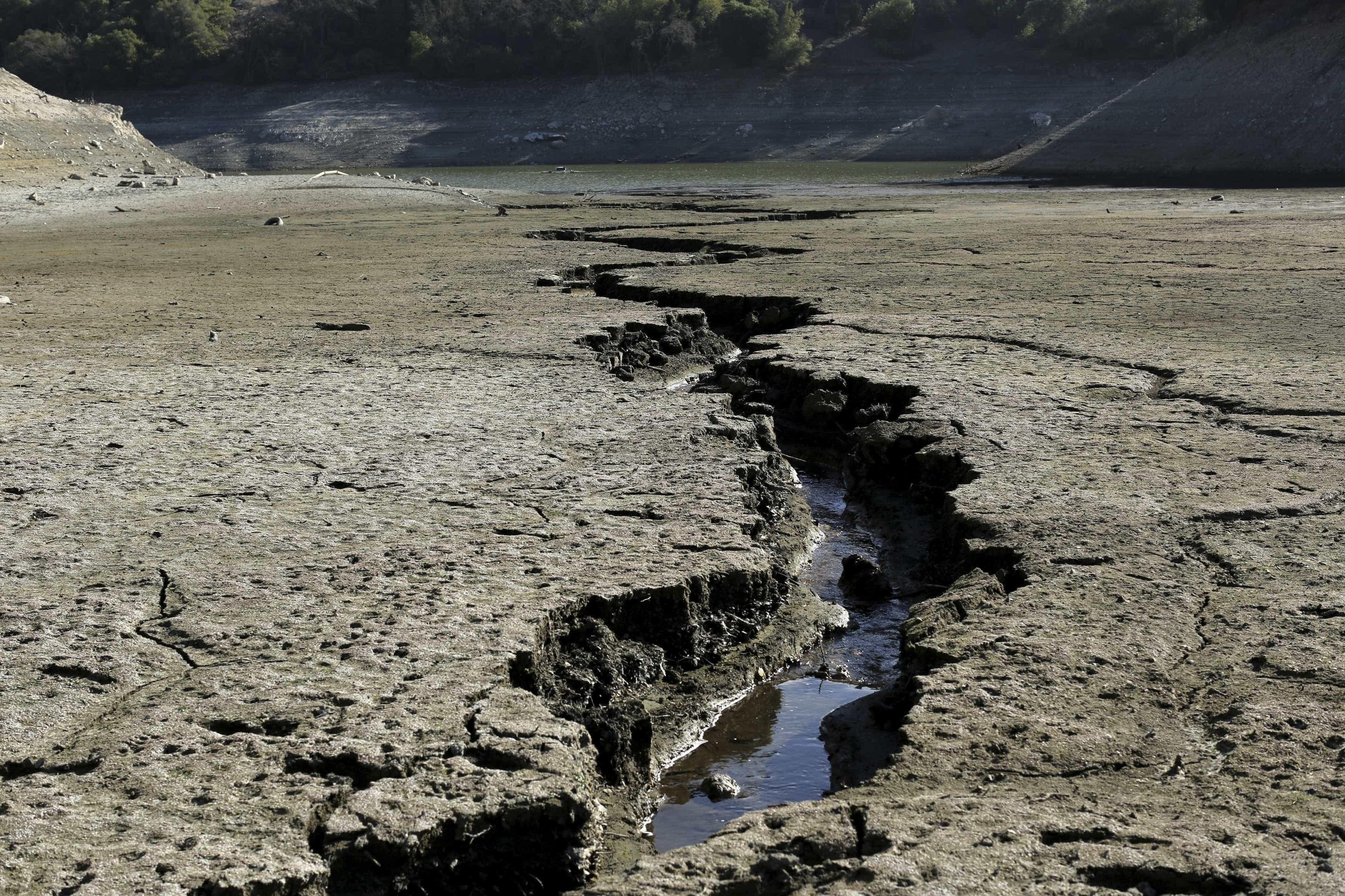 Custo económico do aquecimento global já é visível em 'micro extremos'