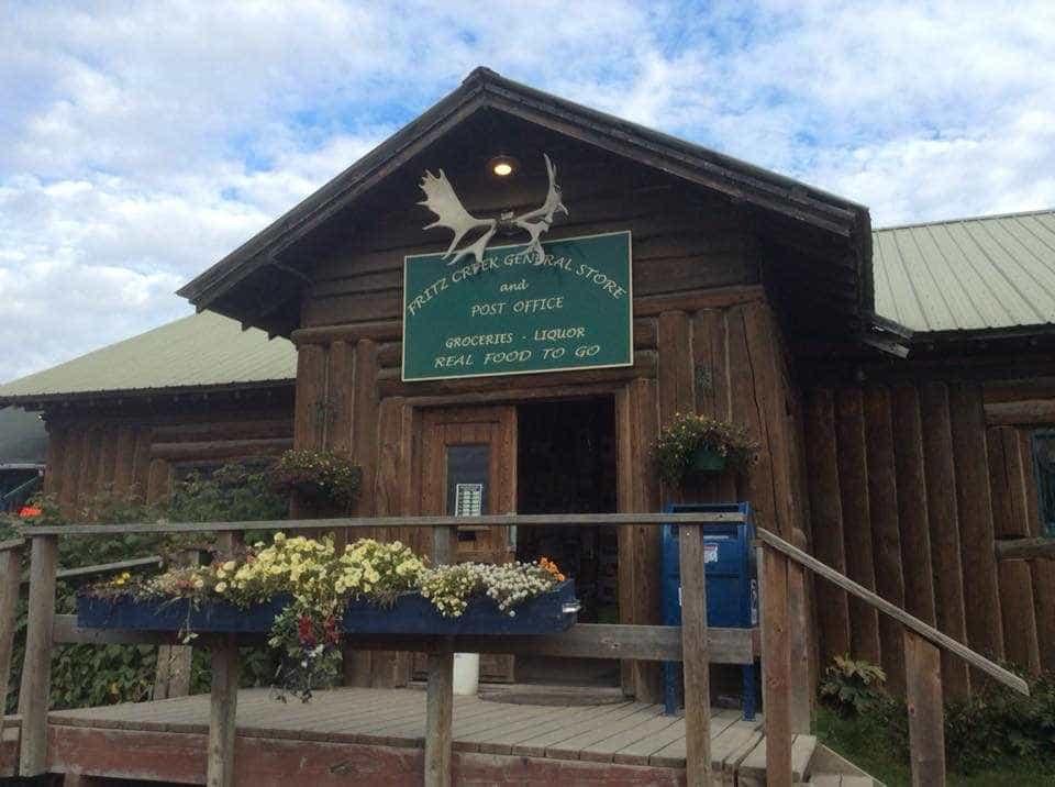 Gata 'despejada' de loja do Alasca onde vivia há mais de seis anos