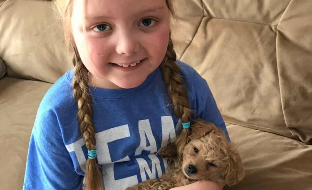 Menina de 7 anos com cancro raro recebe cartas de cães de todo mundo