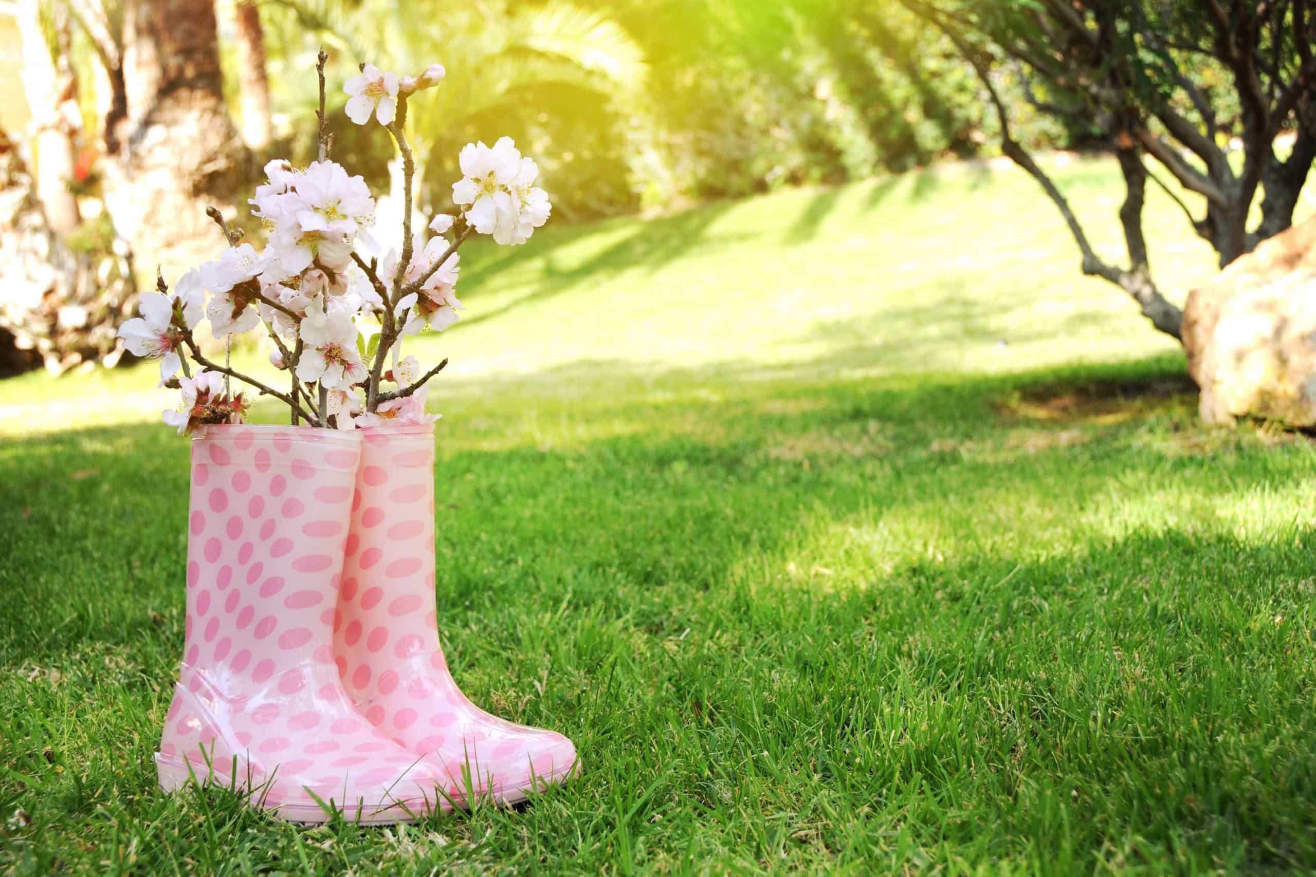 Tenha o melhor jardim nesta primavera