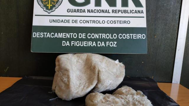 GNR apreende três quilos de meixão em estabelecimento da Nazaré