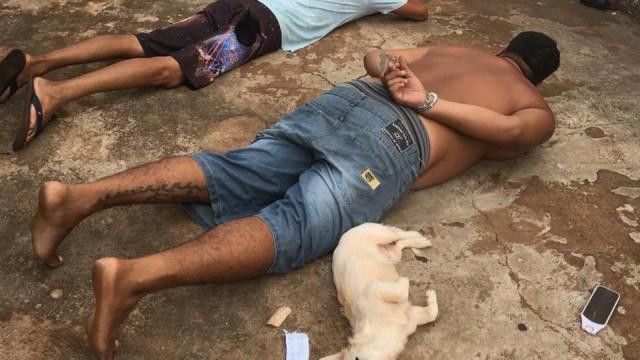 Depois de ver dono algemado, cadela decide 'entregar-se' à polícia