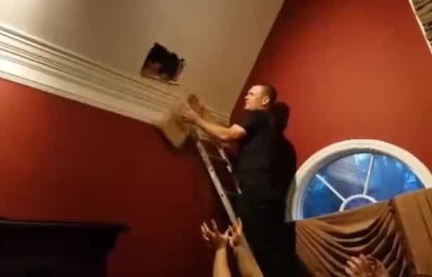 Bombeiros chamados para salvar cadela presa em tecto após caça ao esquilo