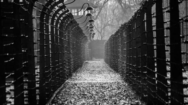 Investigada morte de milhares de doentes mentais na II Guerra Mundial