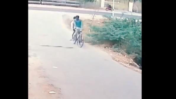 Passeio de bicicleta acaba com cobra a tentar 'apanhar boleia'