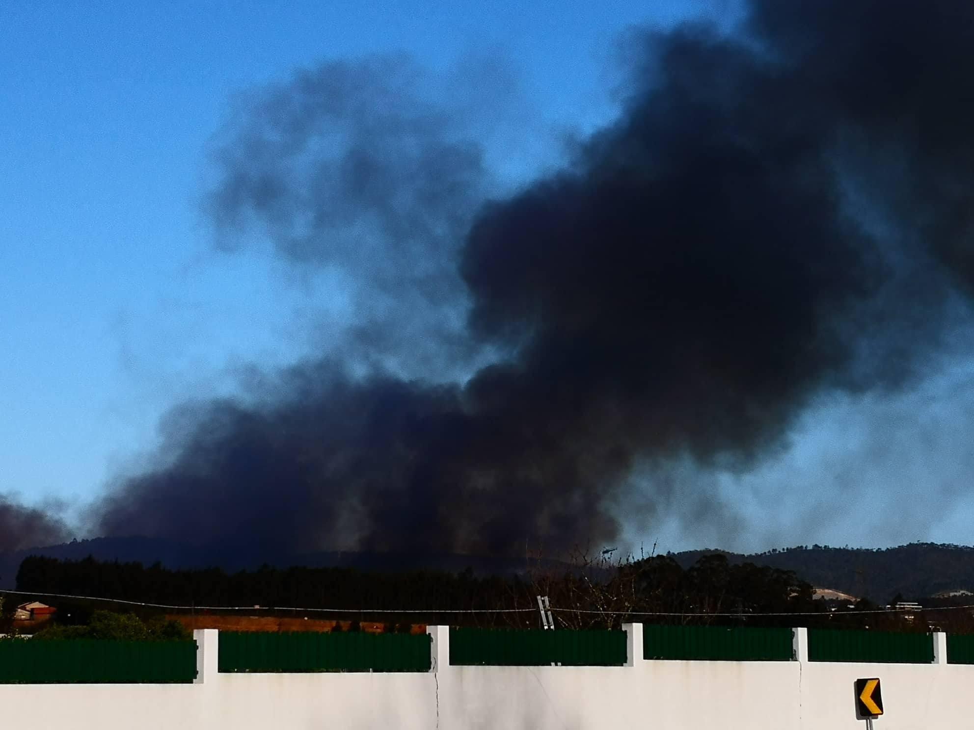 Incêndio florestal em Oliveira de Azeméis faz um morto