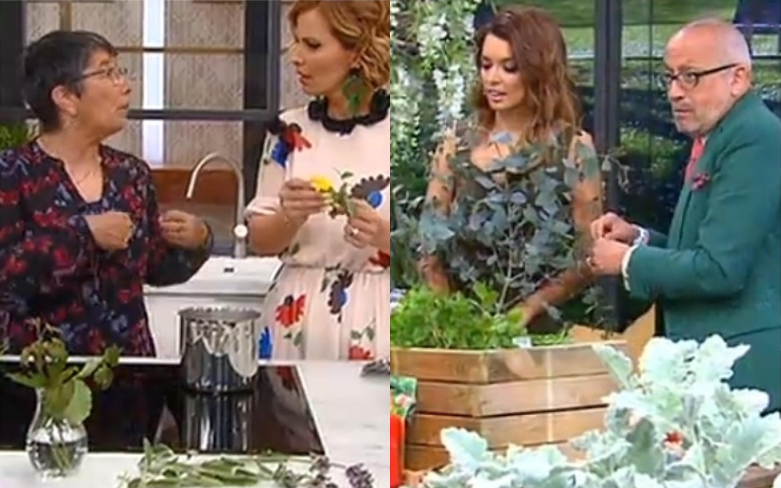 'Você na TV' e 'Programa da Cristina' têm início com conteúdos 'iguais'
