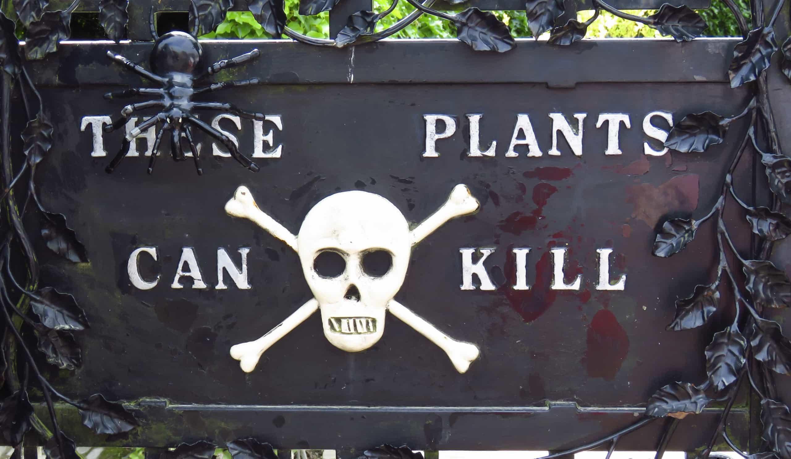 Atreva-se a entrar no jardim mais perigoso do mundo